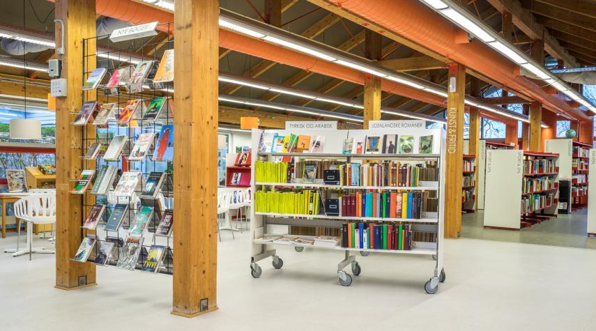 Nivå Bibliotek