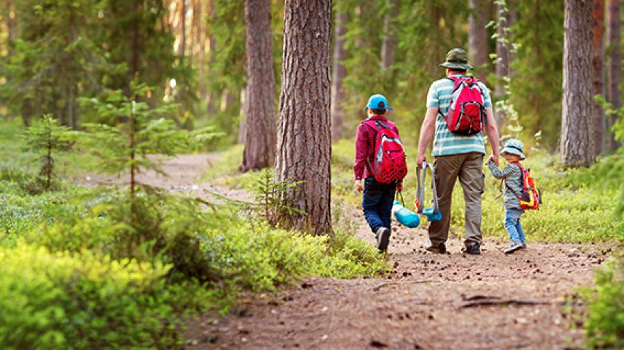 Foto: Familie i skoven
