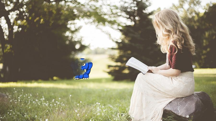 Læs en roman for pokker